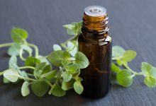 Photo of The Respiratory Solution: Wild Oregano – The Most Potent Germicide