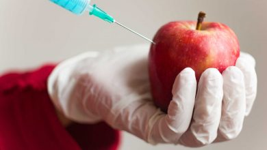 Photo of The Risks Of Genetically Engineered Foods