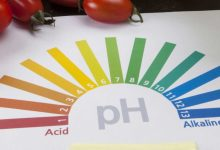 Photo of The Link Between pH and Our Health