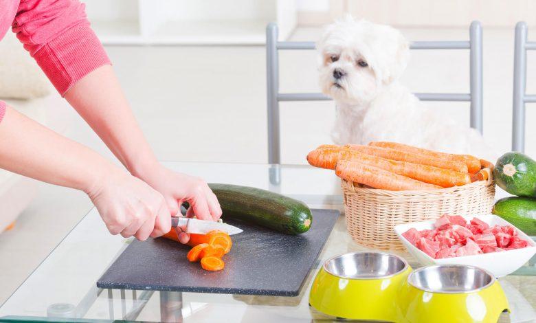 healthy pets diet
